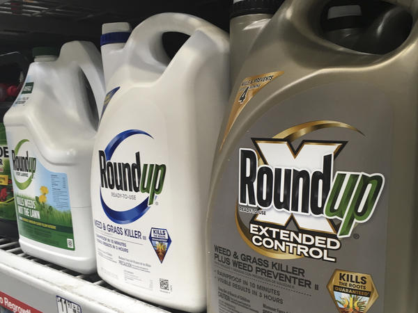 Containers of Roundup are displayed on a store shelf in San Francisco. The verdict is the third recent court decision in California involving the glyphosate-based Roundup weed killer.