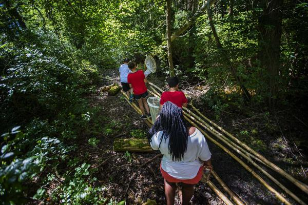 Campers from the Mashpee Wampanoag science camp search for bugs in the cedar swamp. (Jesse Costa/WBUR)