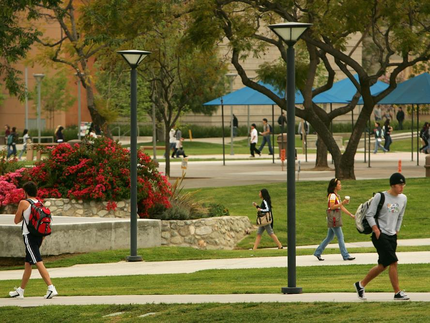 Cal State Long Beach Search Classes