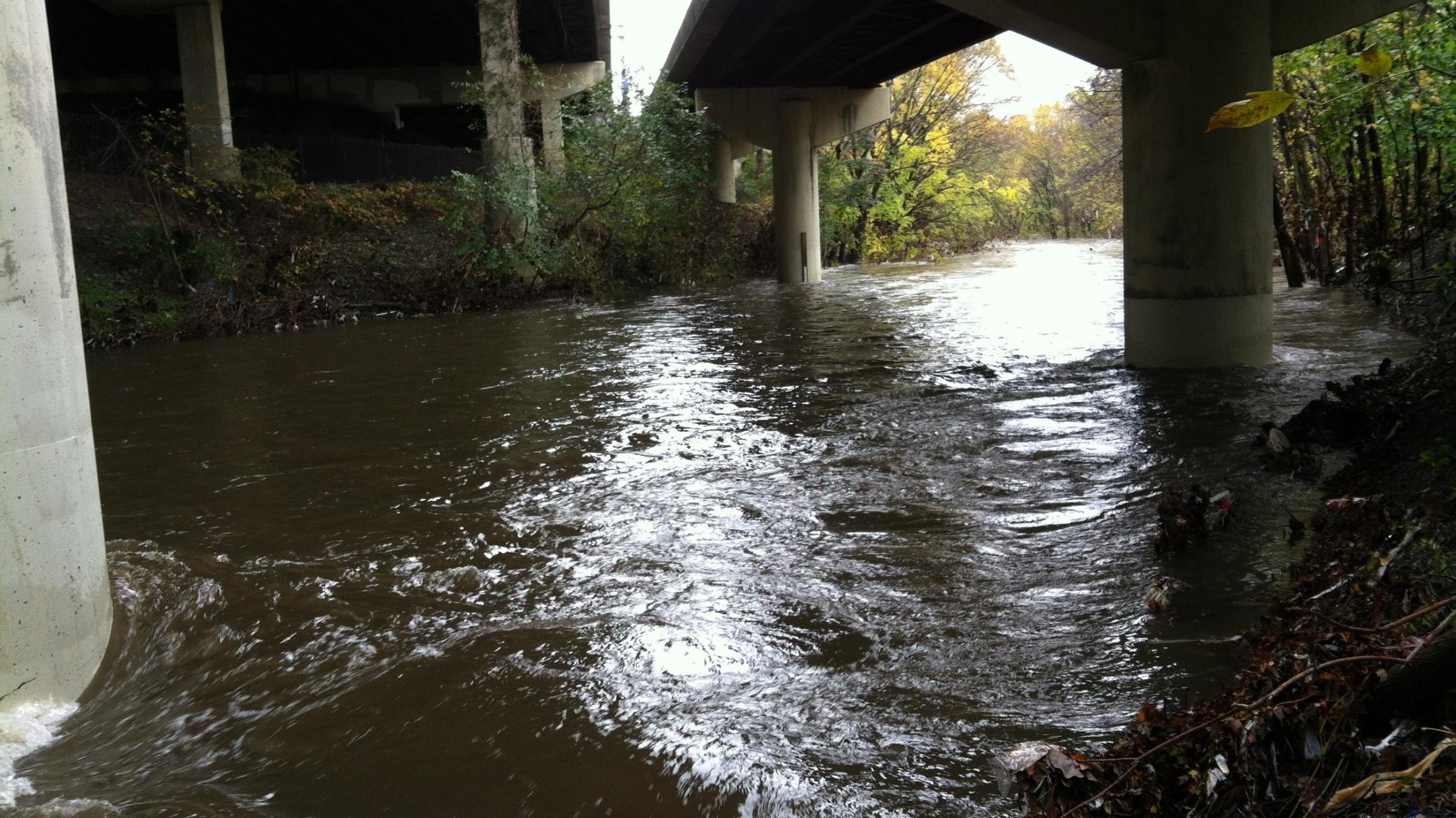 Scientific research on acid rain