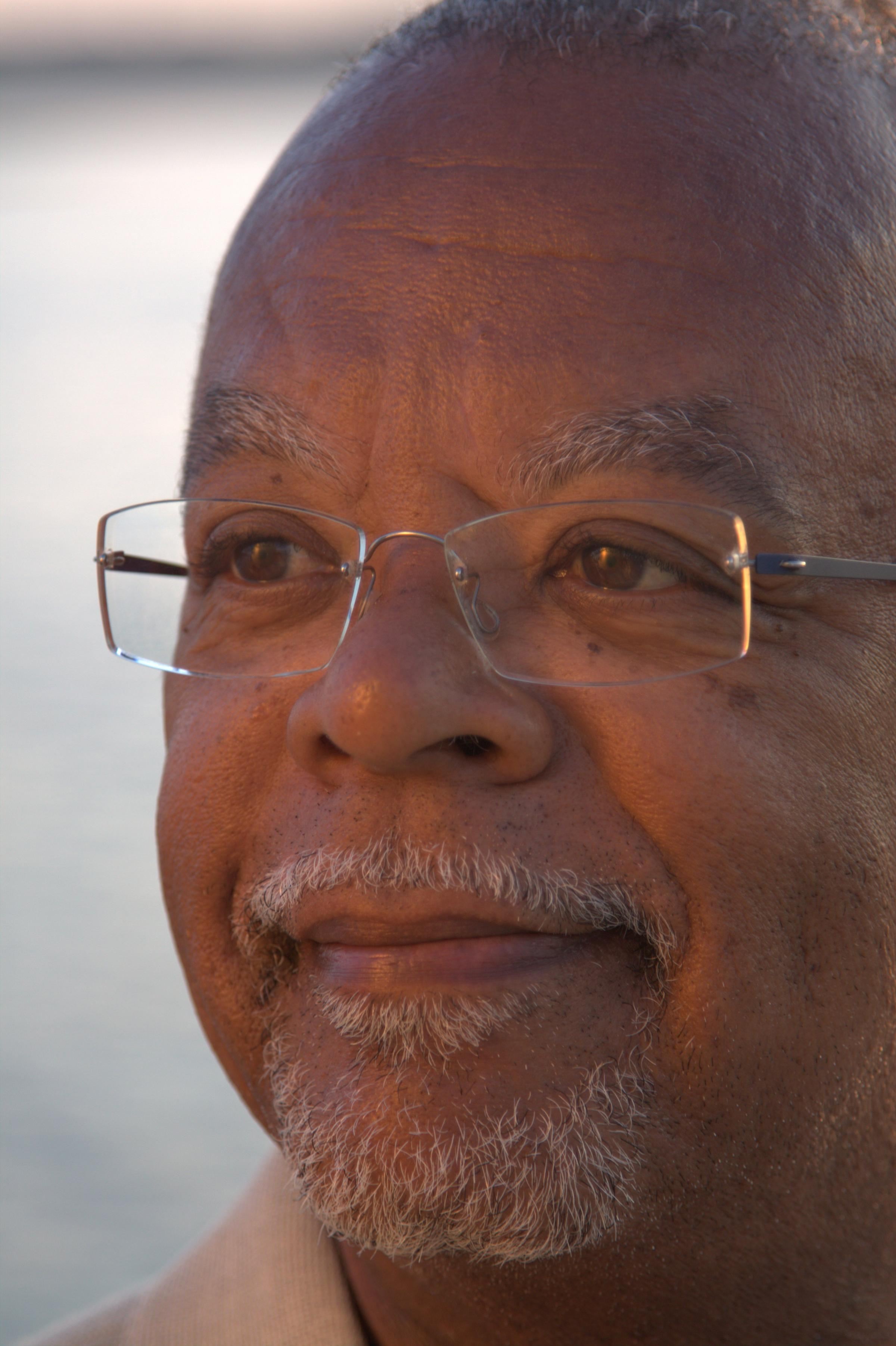 an analysis of henry gates jr The arrest of henry louis gates, jr donald e wilkes jr my analysis with the undisputed basic facts, which are: 1 on the day in question, july 16.