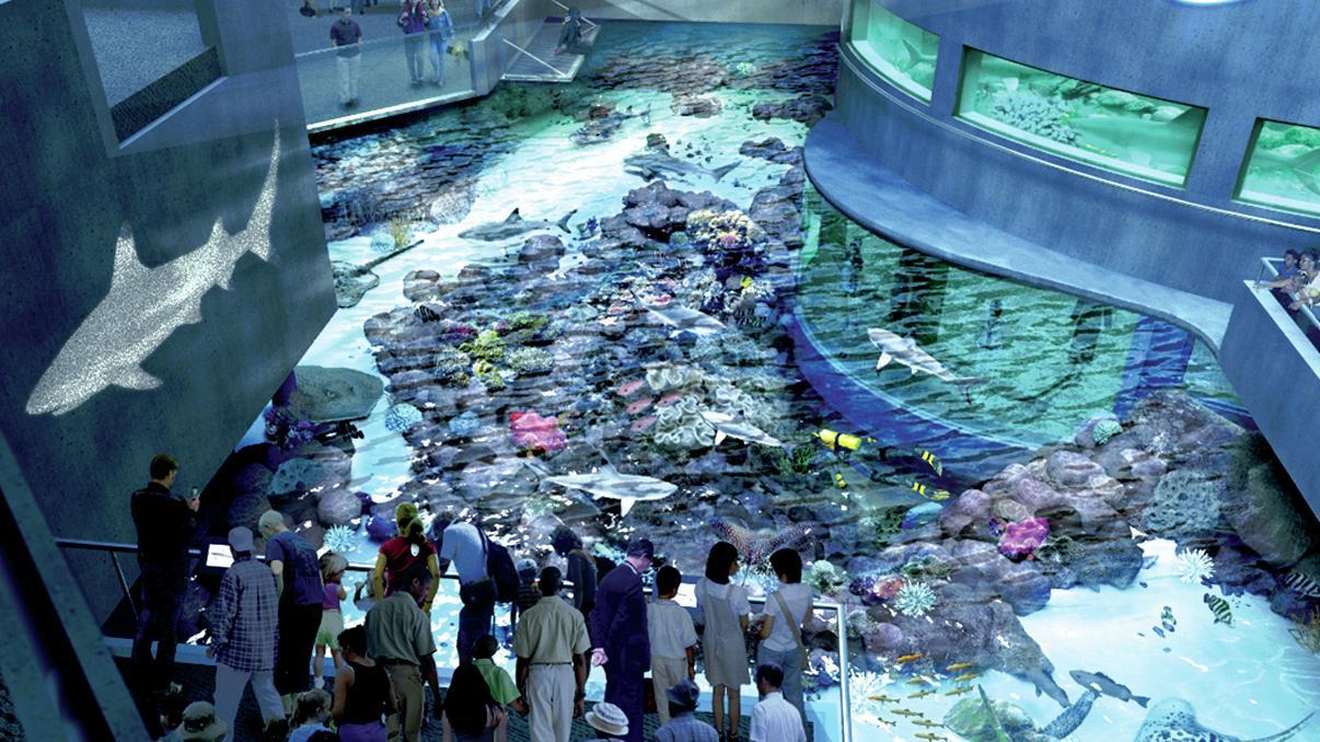 Aquarium sculptors create coral for conservation awareness for Aquarium washington dc