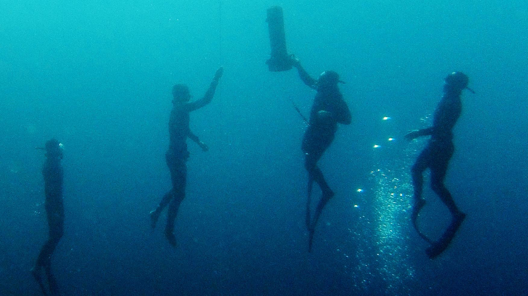 Some Competitors Say Free-Diving Needs A Safety Sea Change