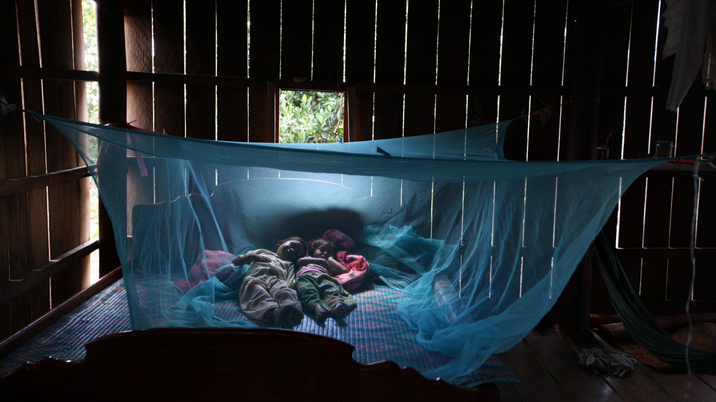 anti-malarial bednet