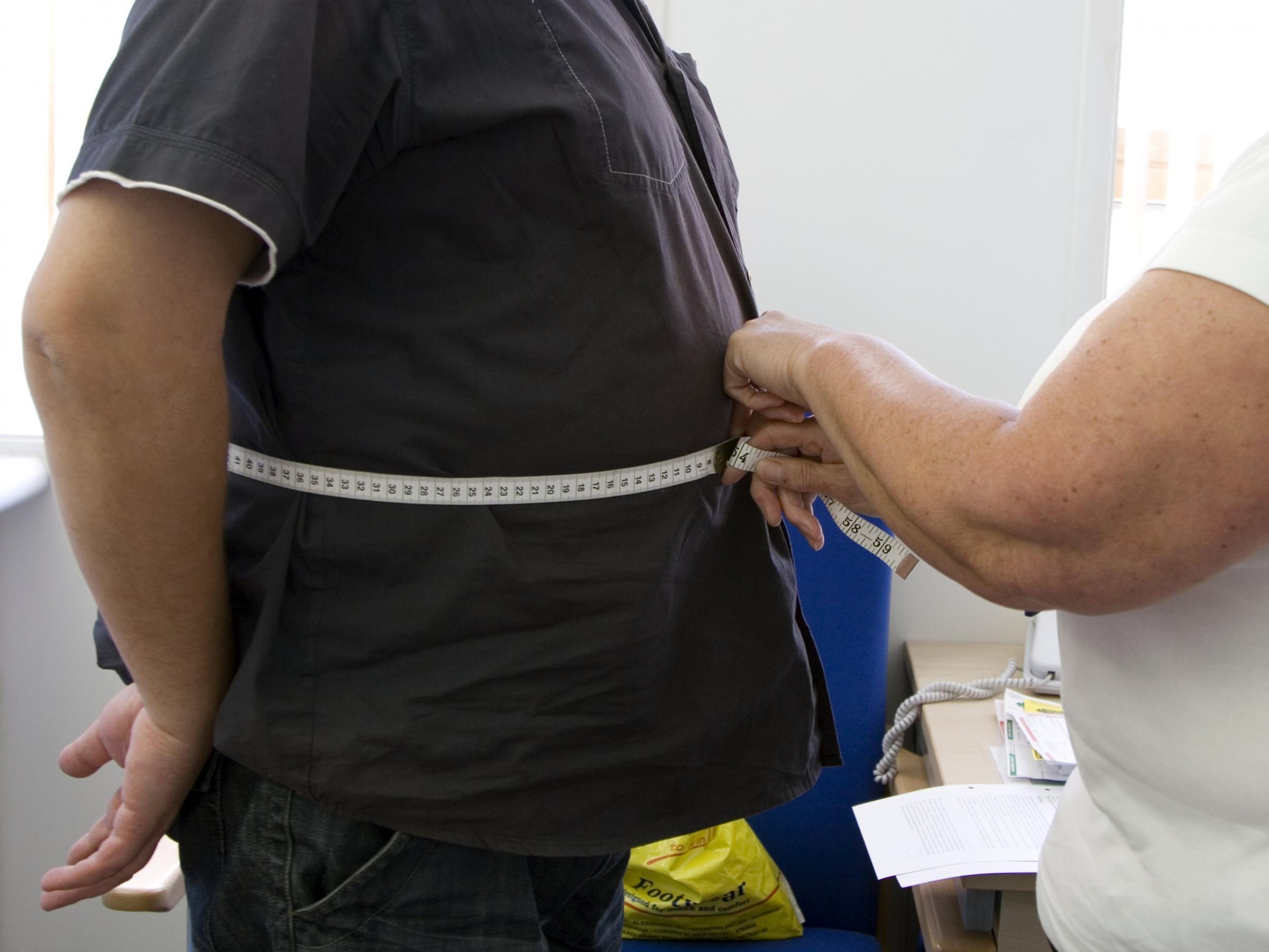 sample paleo diet for fat loss