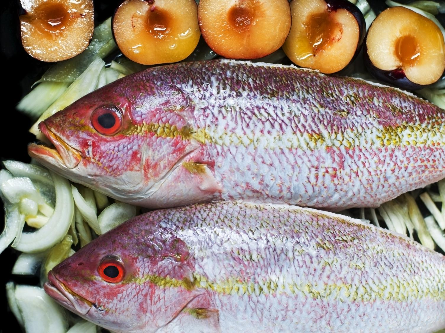 Sexually transmitted food poisoning a fish toxin could be for Fish to avoid