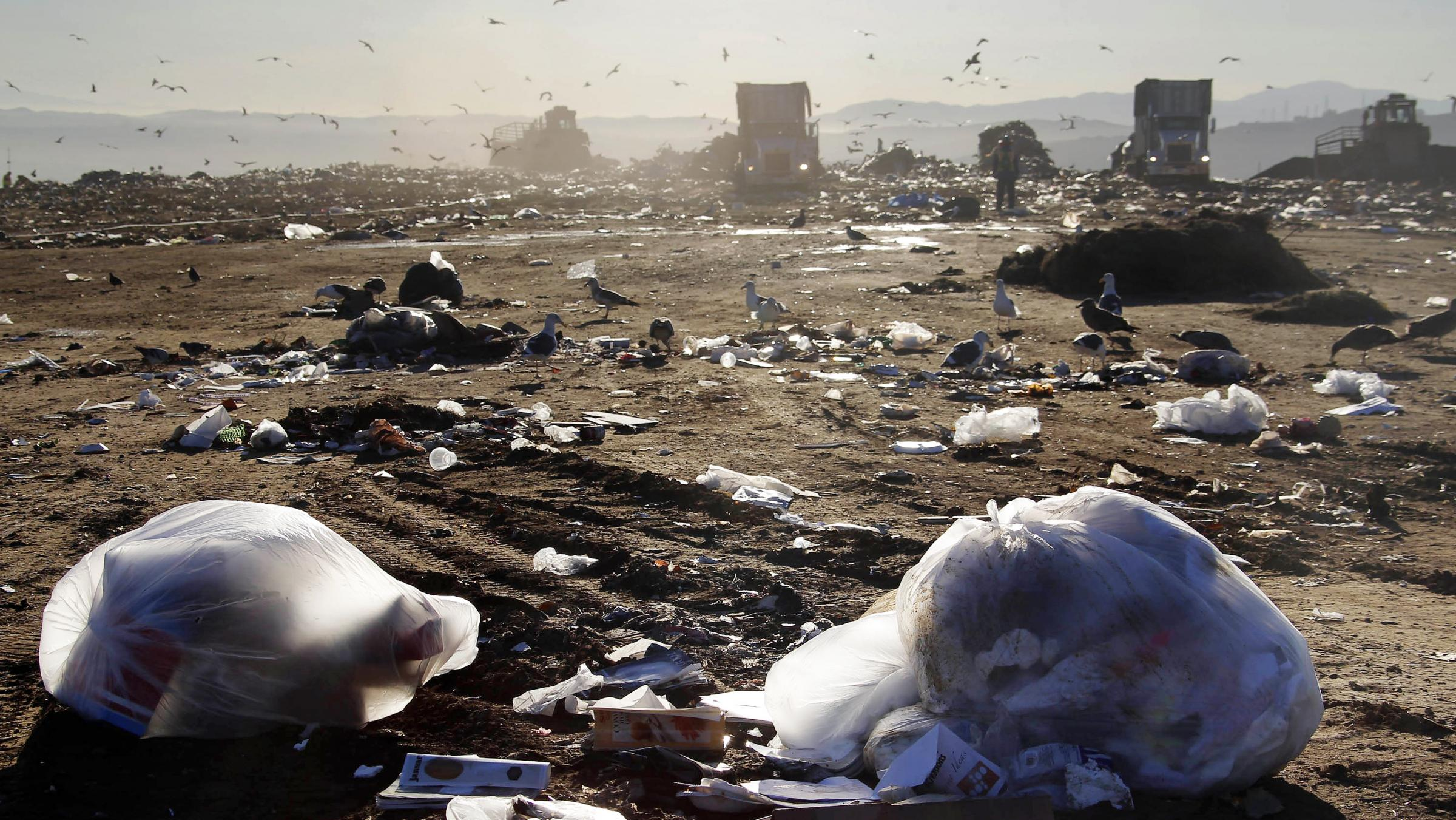 Closing america 39 s largest landfill without taking out the for American soil