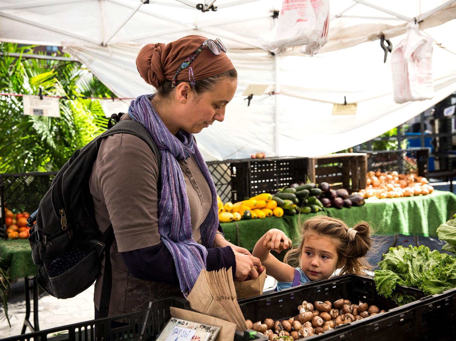 Renew Food Stamps Online New York