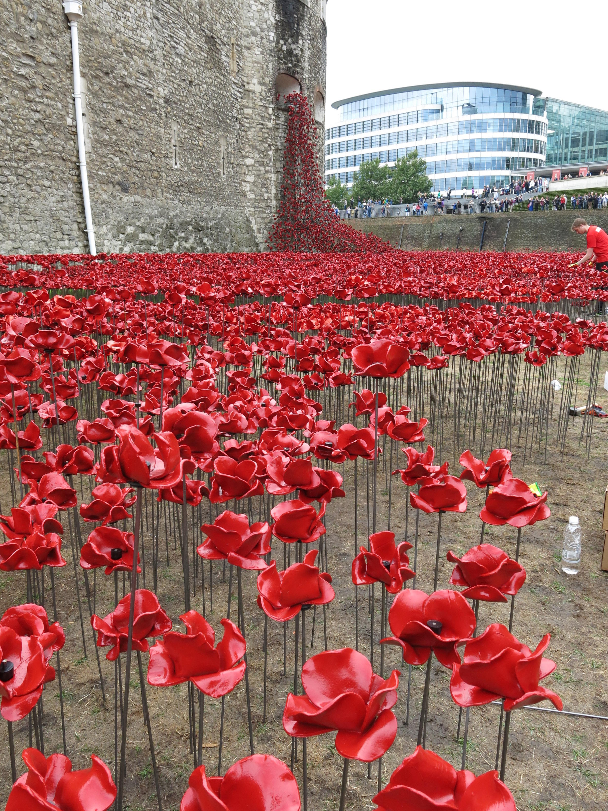 sea of poppies and colonialism Sea of poppies, the first part of the trilogy starts a cycle of stories that is continued in the next book: river of smoke history seeps into the stories of the characters in so many ways that they become histories of colonial exploitation.