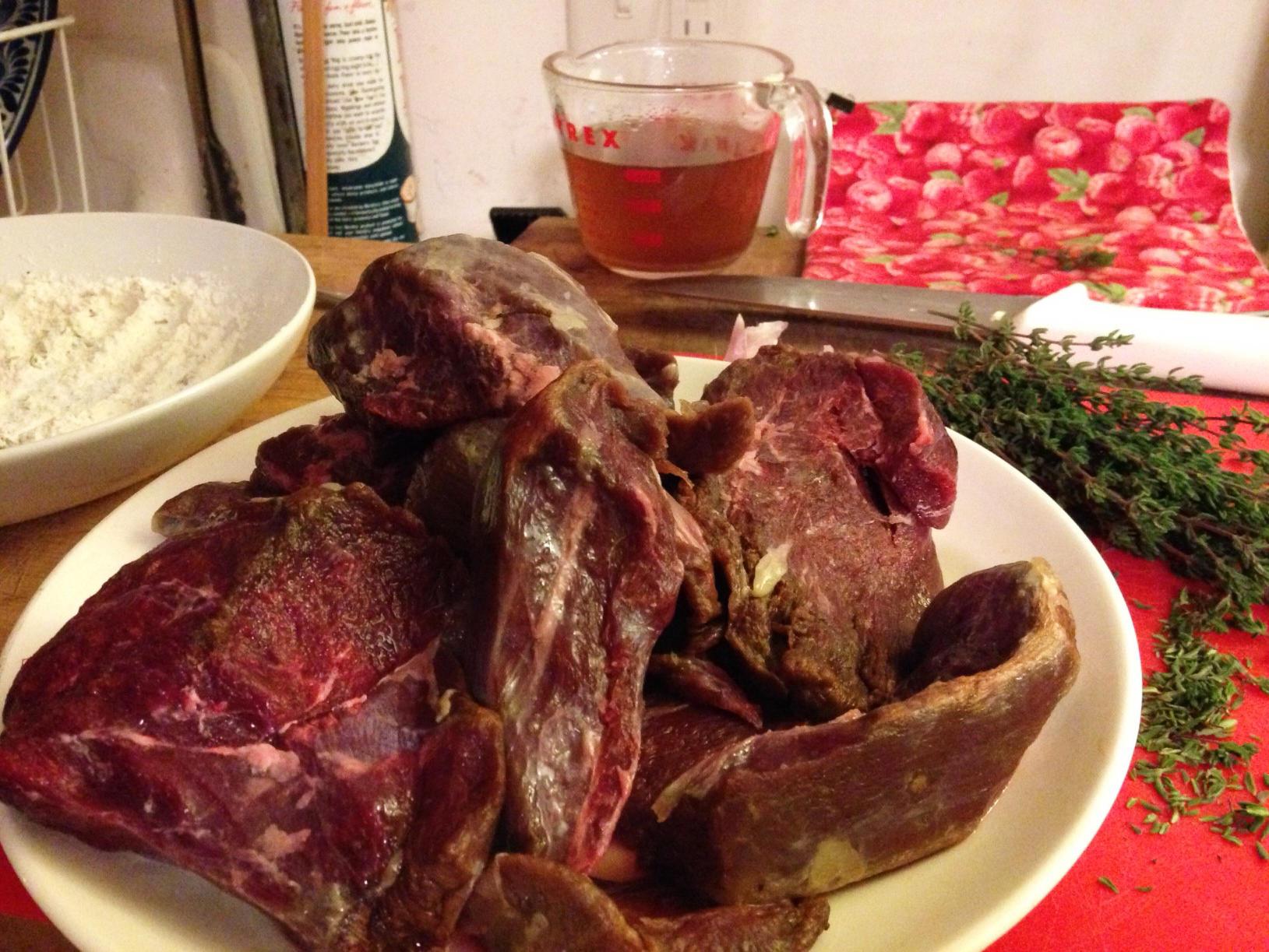 Bear meat - photo#10