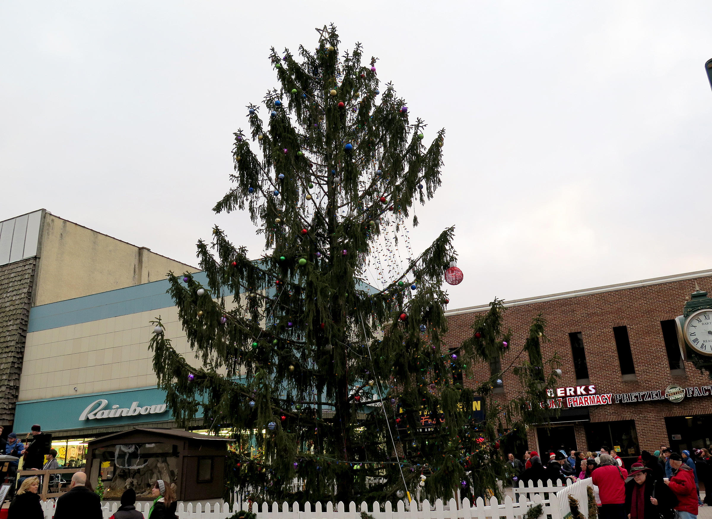 It Just Needed A Little Love: An Ugly Spruce Ties A Town