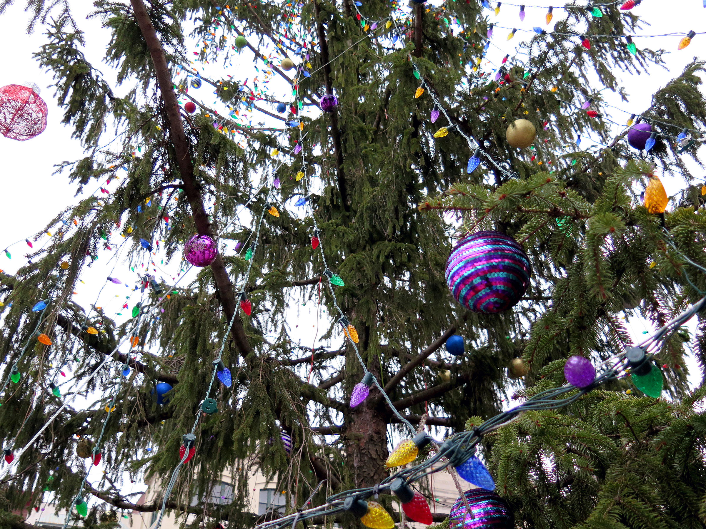 Towns that have great christmas decorations read - Instead Of Turning The Tree Into Mulch The Town Decorated It And Ushered It In With A Special Town Reading Of A Charlie Brown Christmas