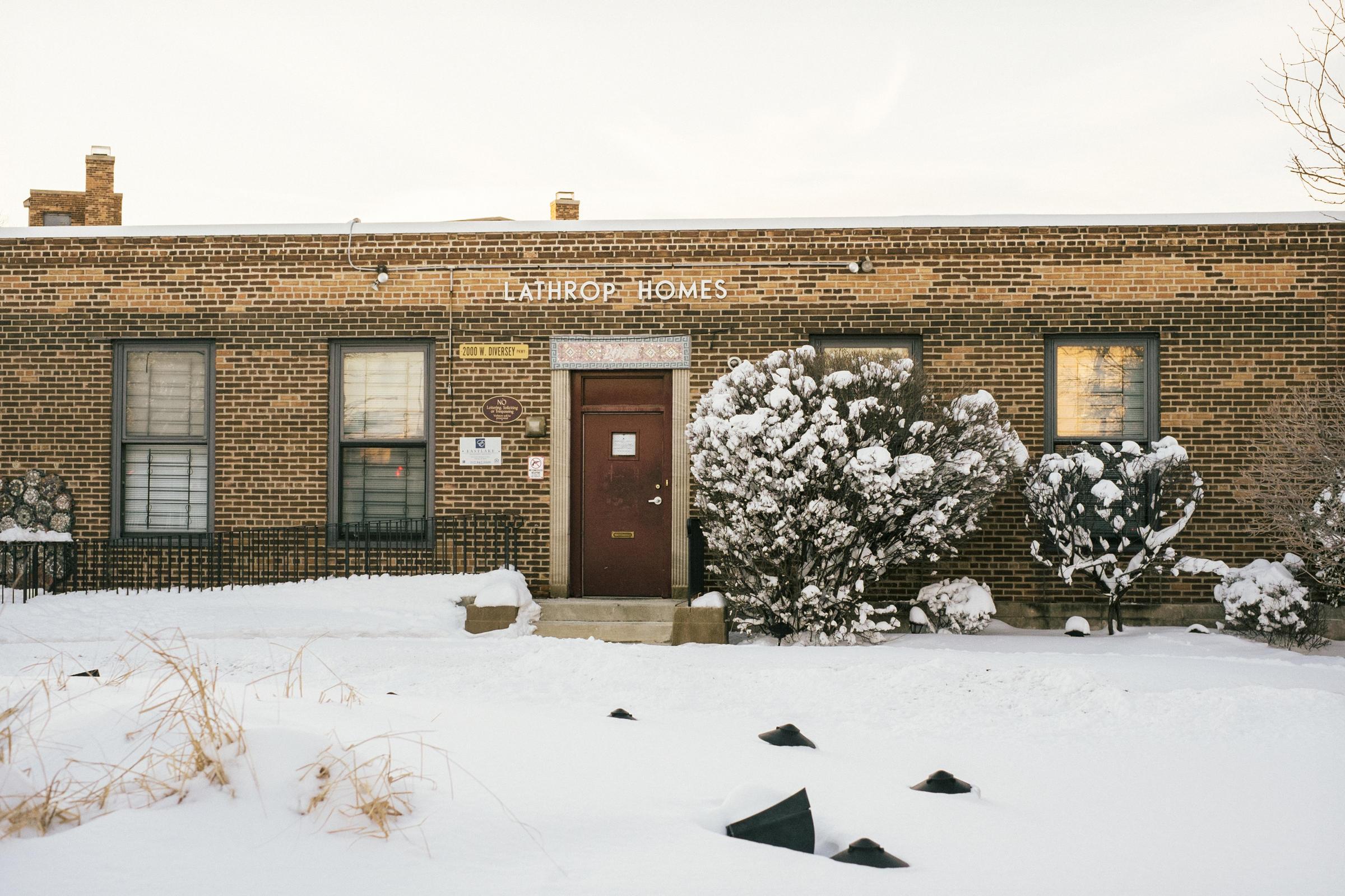 chicagos public housing essay