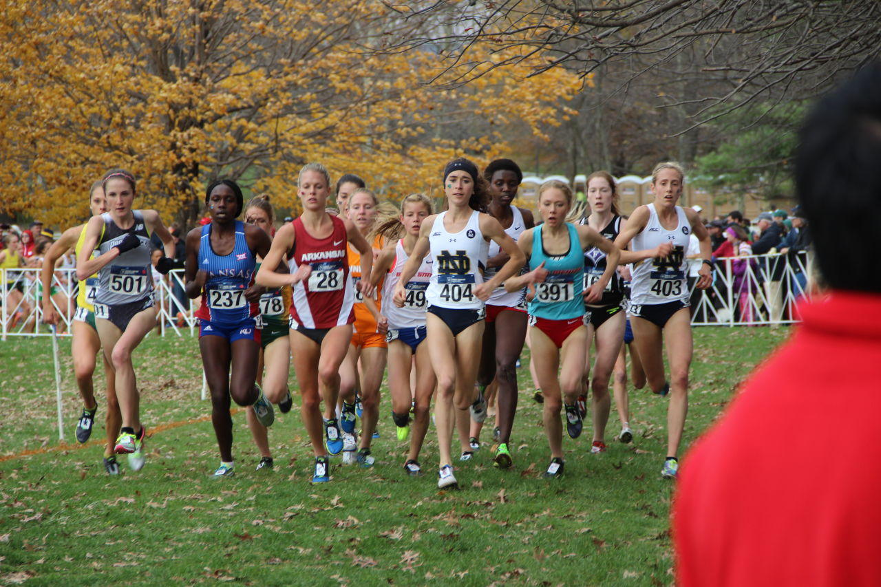 oregon state cross country meet