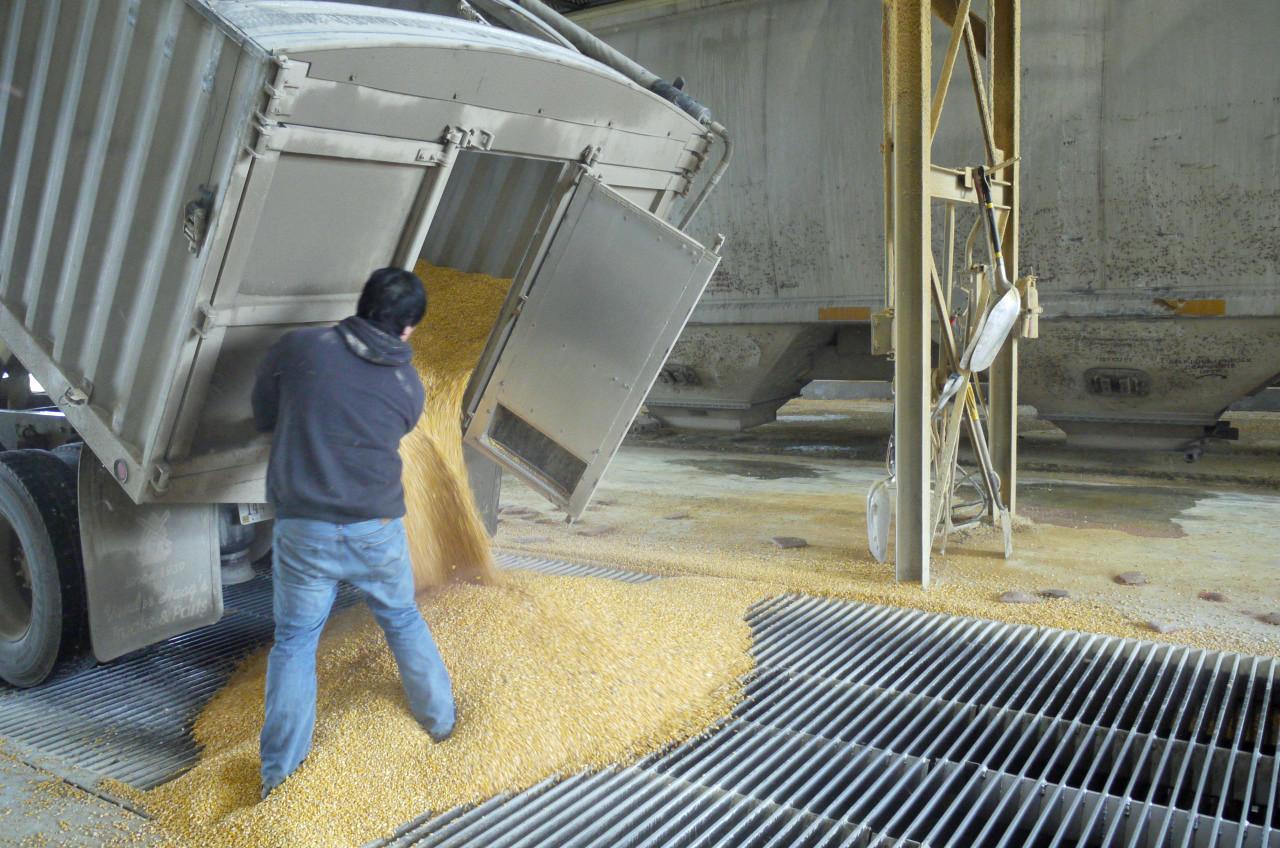 Examining The Benefits And Drawbacks Of Ethanol New