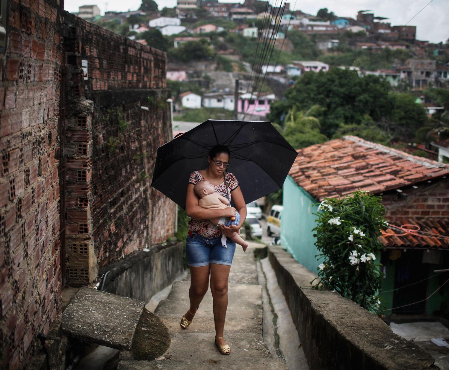 CDC team kicks off Zika study in Brazil focused on Zika