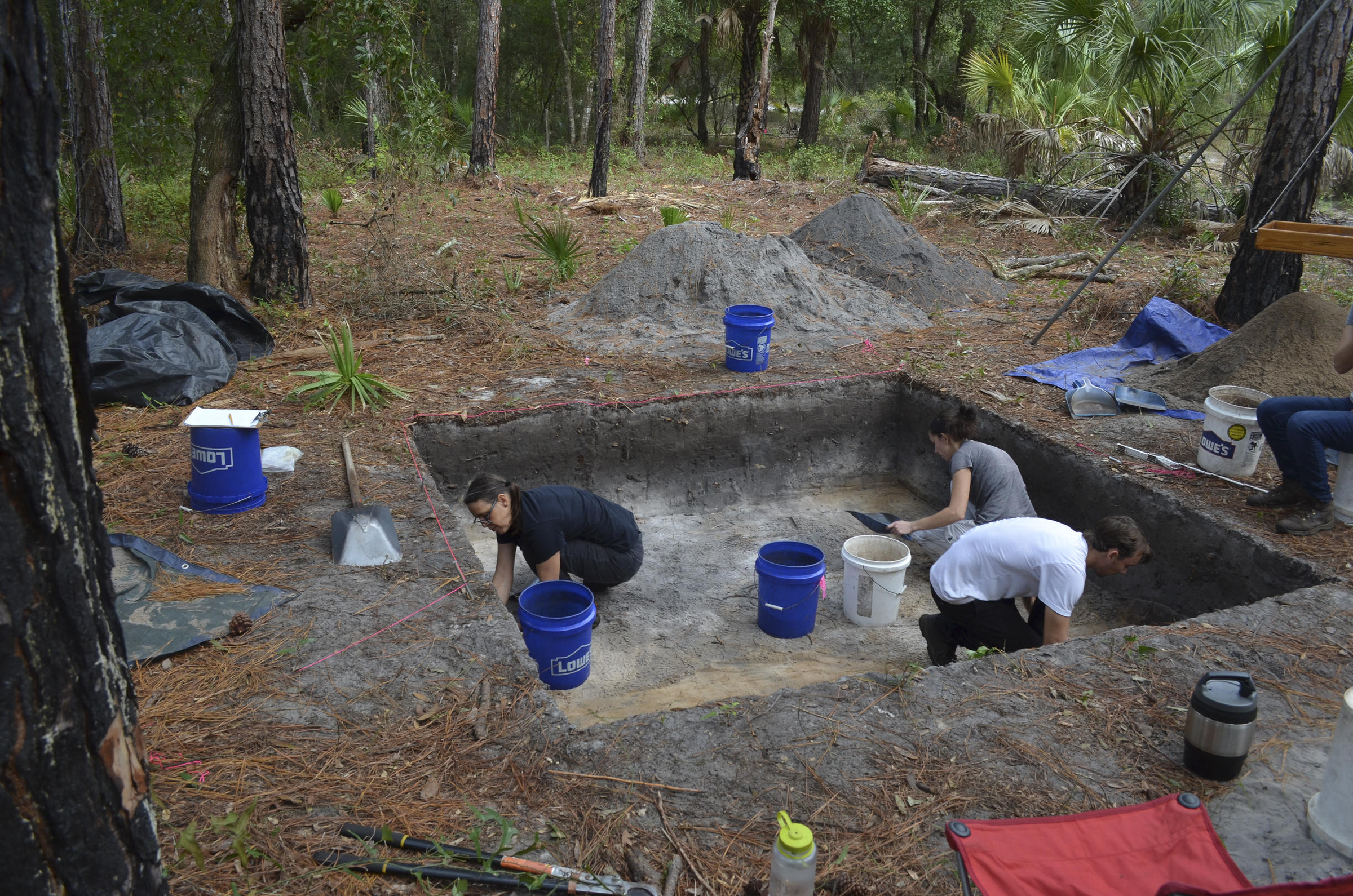 List of Free Online Archaeology Courses and Classes