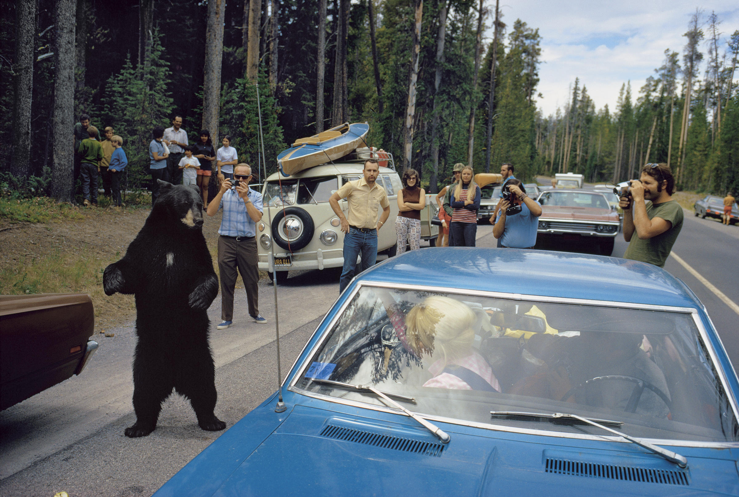 Big Bear Car Service