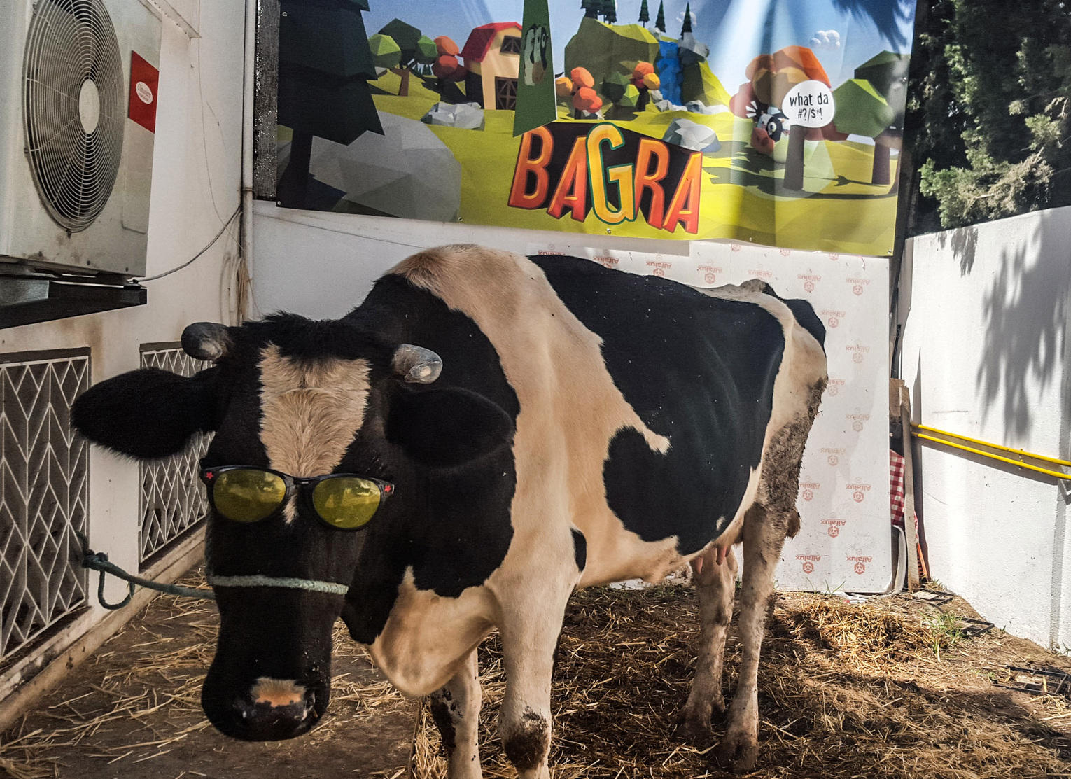 it sounds udderly ridiculous but video gamers in tunisia can win