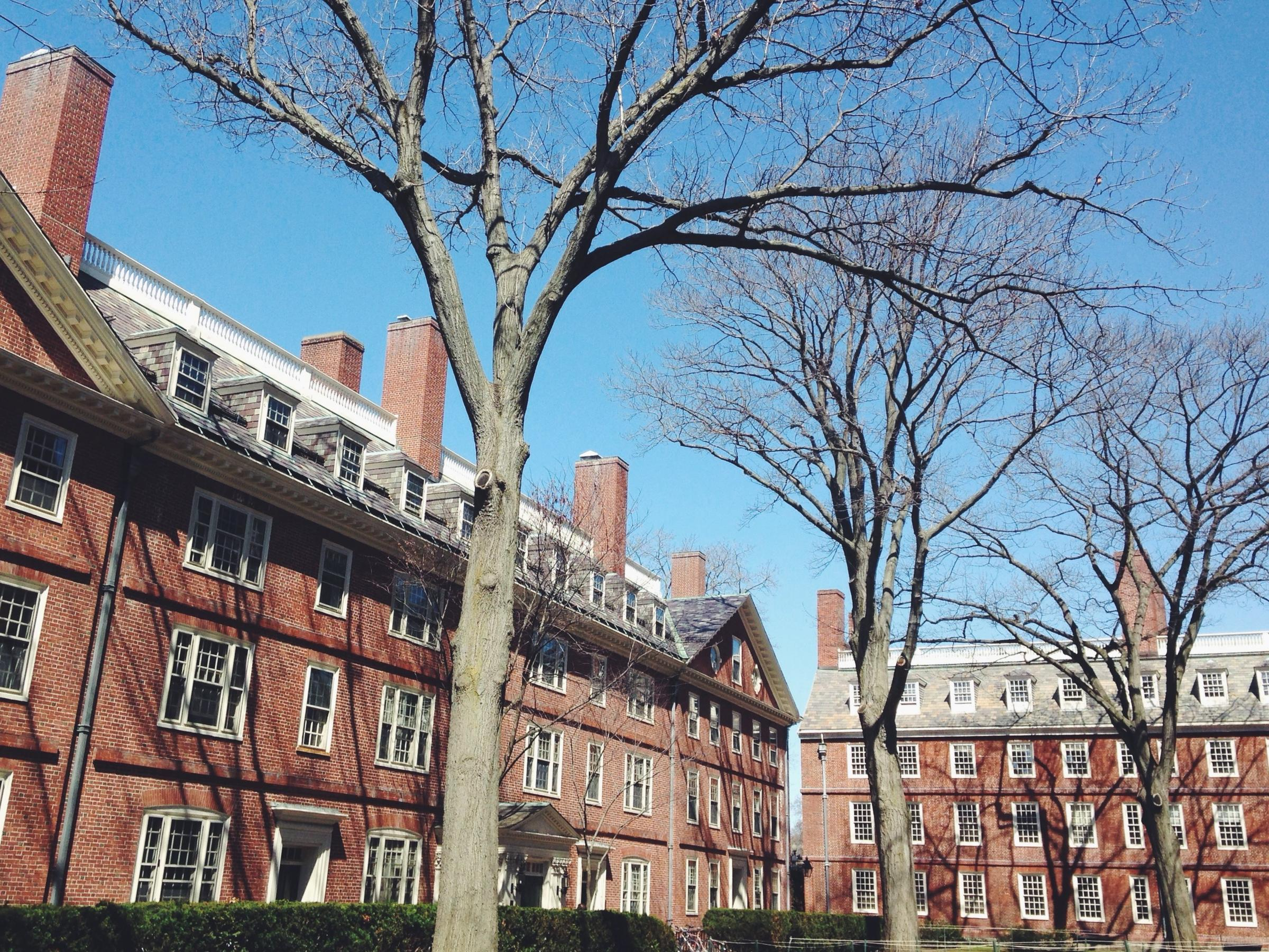 Harvard's endowment shrinks by nearly $2B