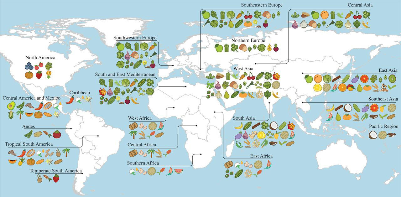 A Map Of Where Your Food Originated May Surprise You | WVTF