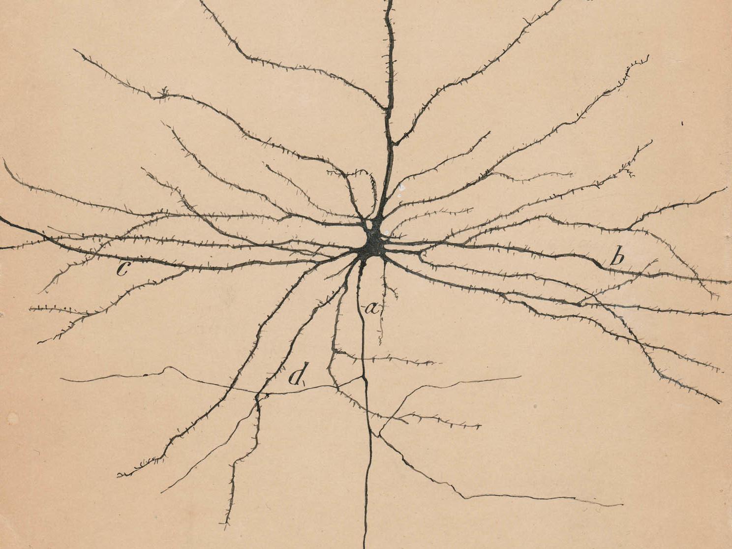 ArtStation - Neural Pathways (Stills from movie), Alexey ... |Neurons Art