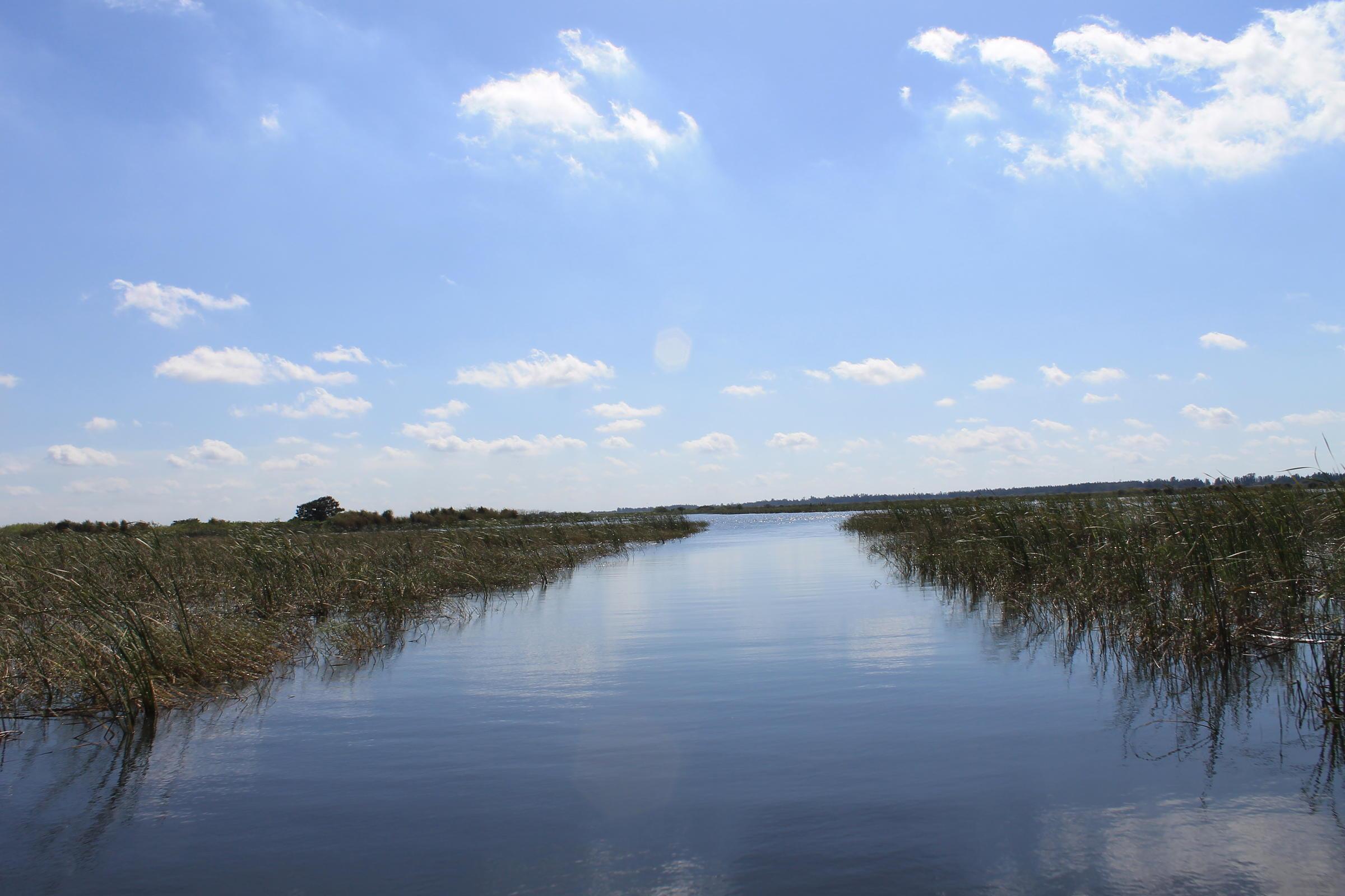 Pictures of lake okeechobee florida North Florida Lakes Florida Bass Fishing
