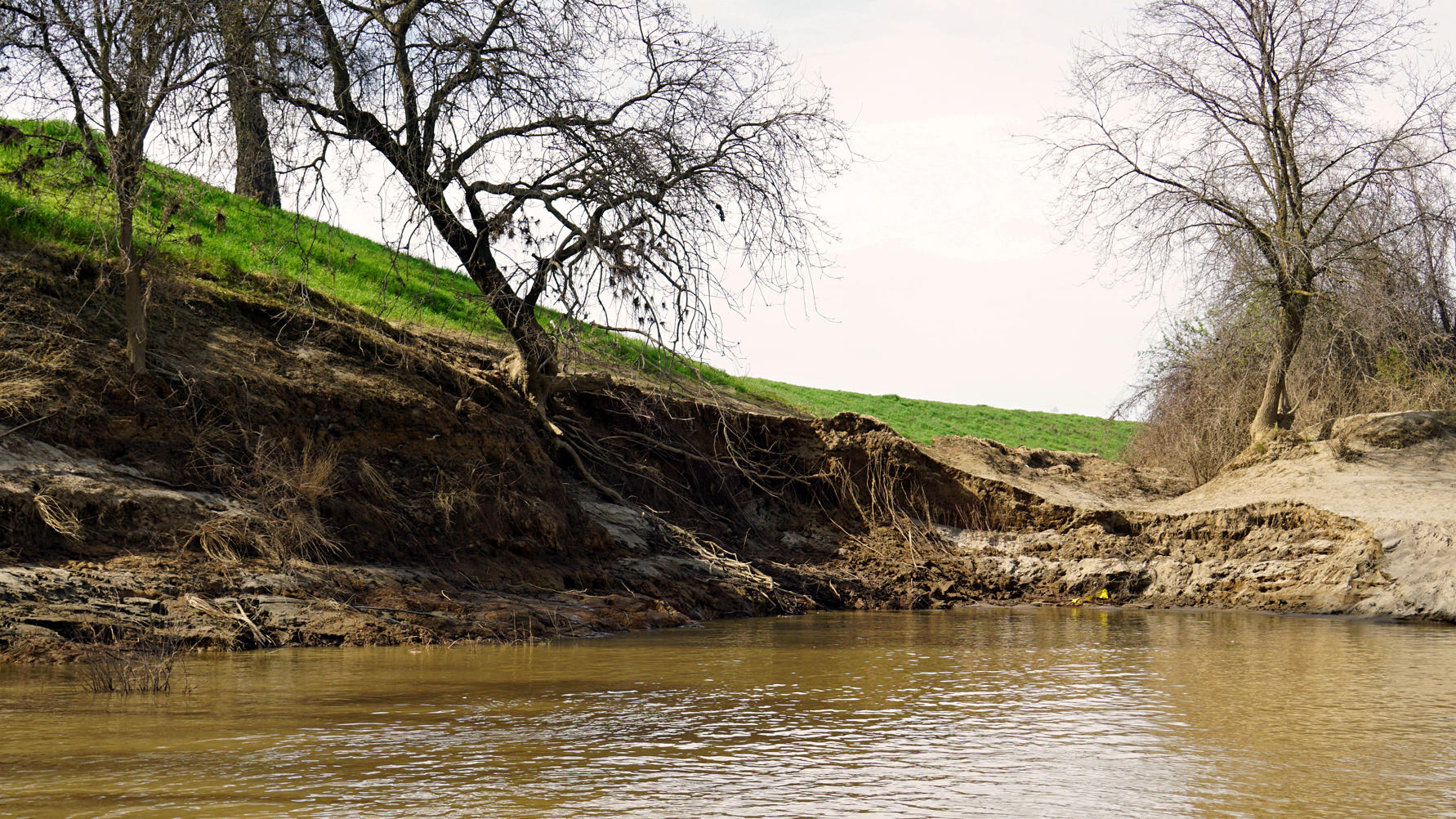 Where Levees Fail In California, Nature Can Step In To ...