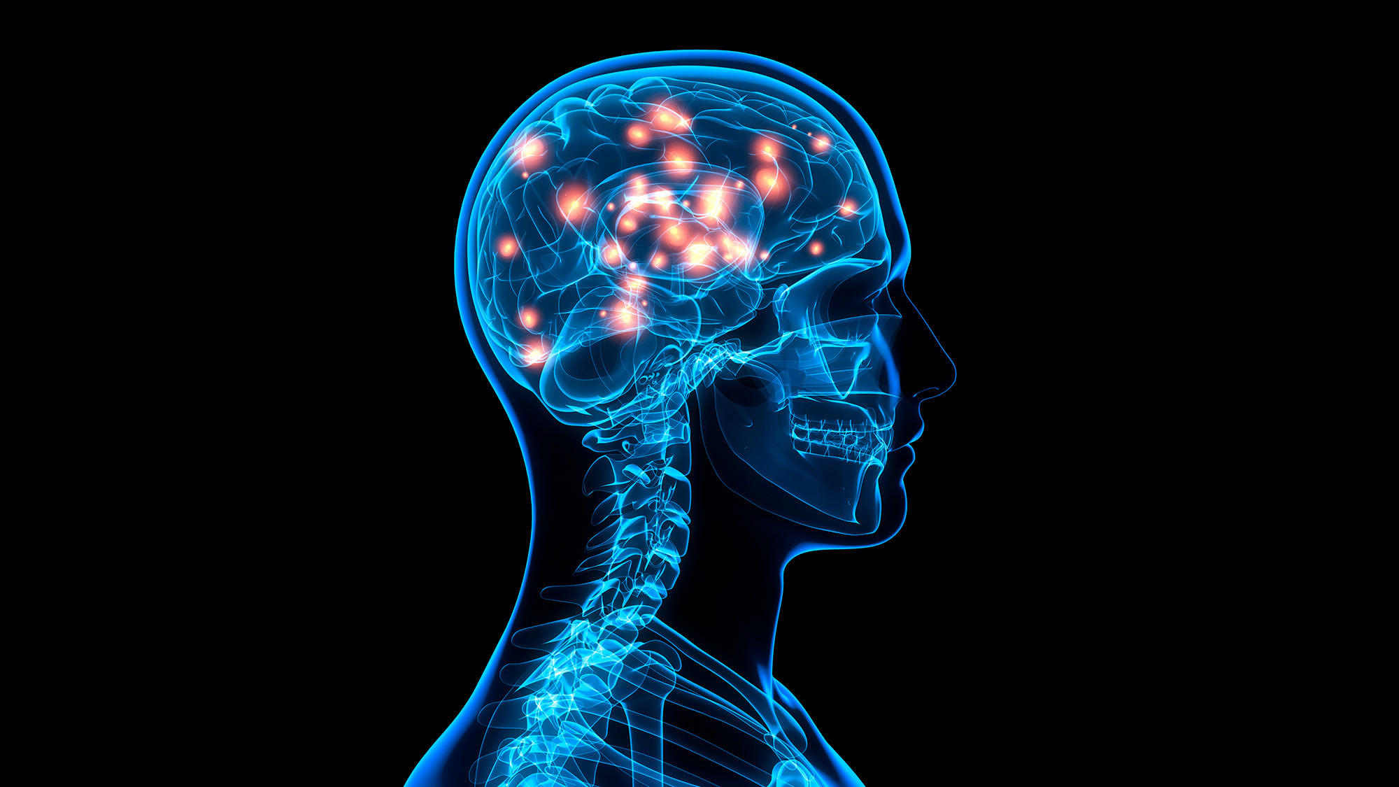 What vitamins are good for memory and brain function picture 3