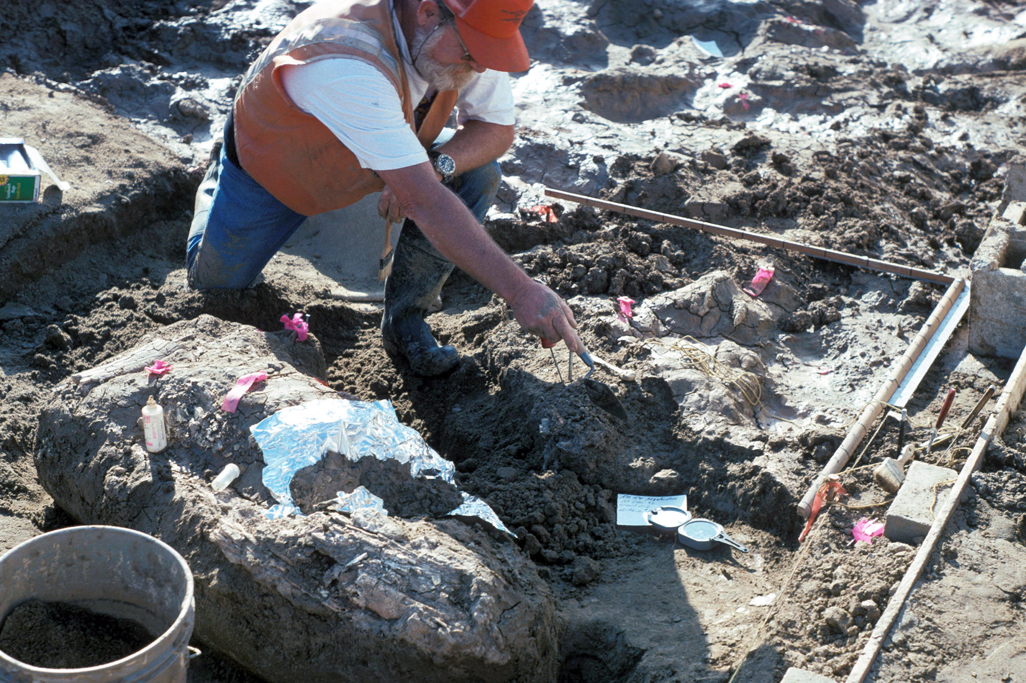 Archaeological find could rewrite American history