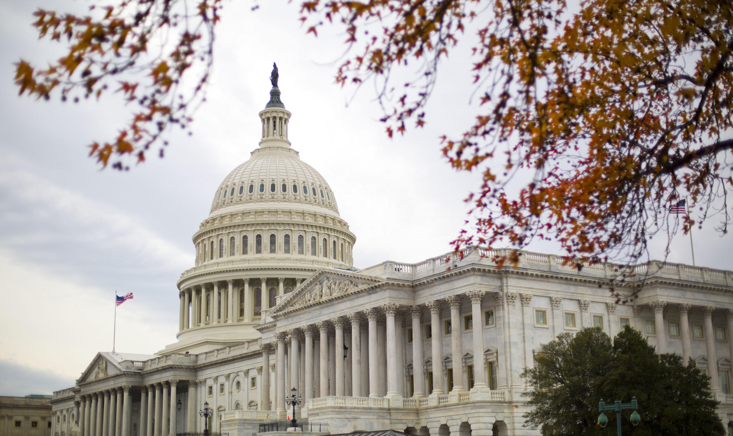 Elected officials weigh in on the House health care repeal vote
