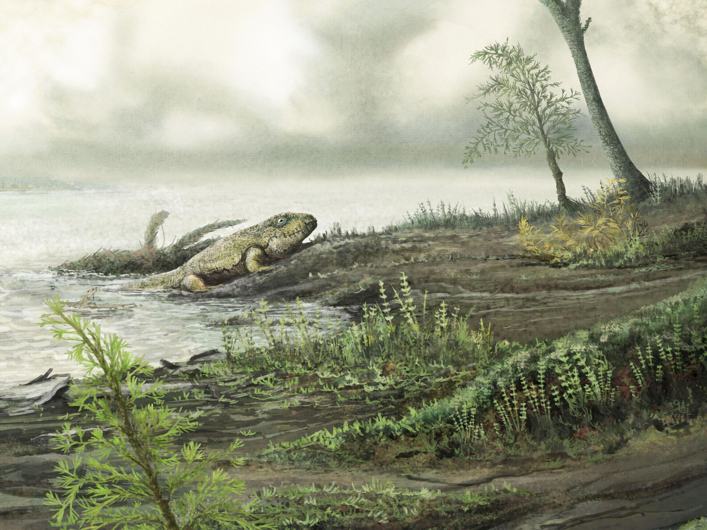 Antibiotic-resistant microbes evolved prior to dinosaurs