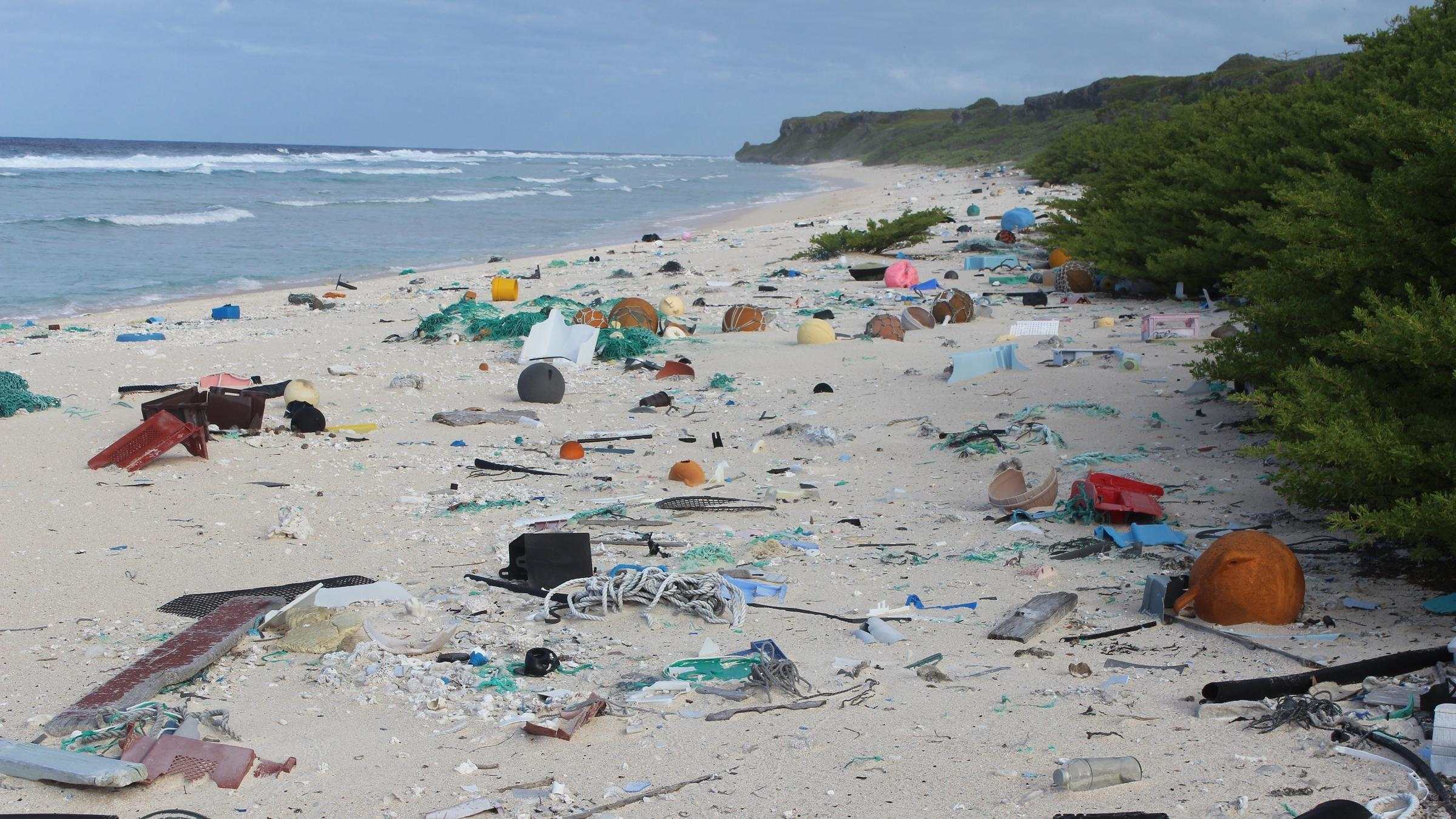 37 million pieces of plastic found on uninhabited Henderson Island in Pacific