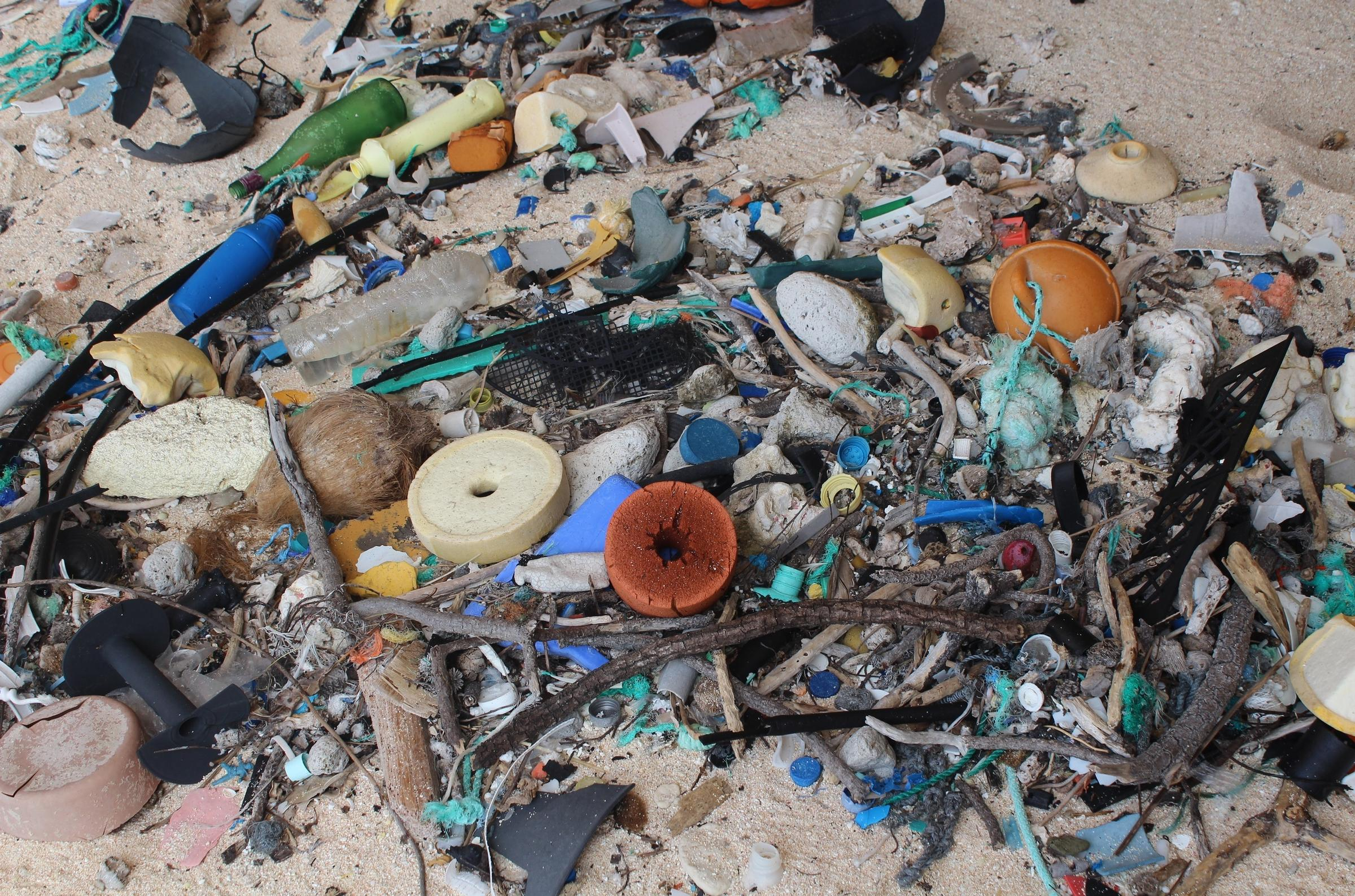 Current assures remote South Pacific atoll of highest accumulation of plastic litter