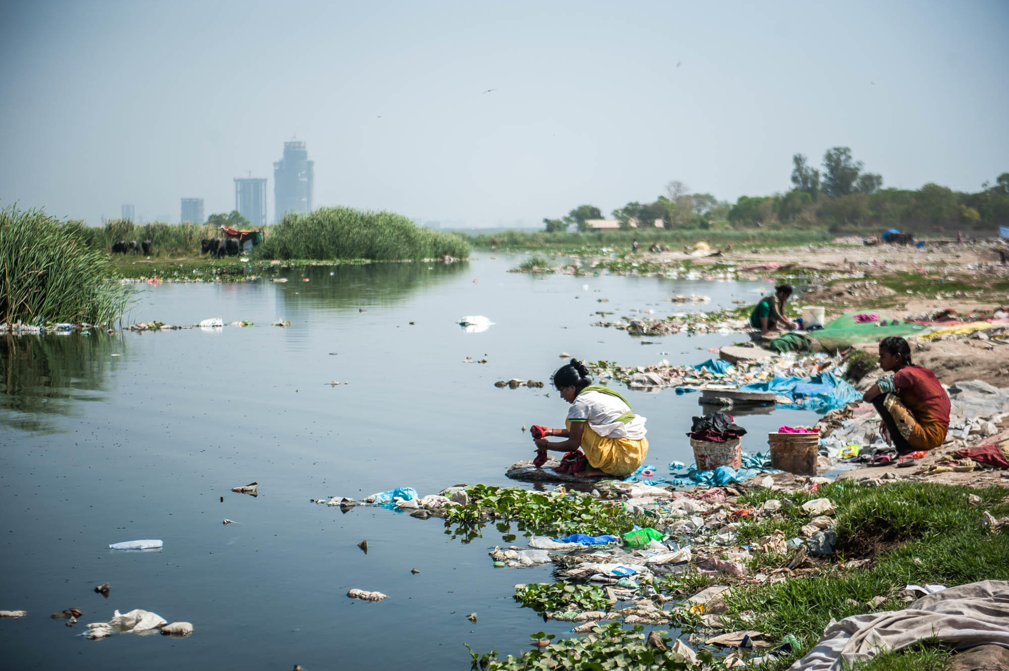 increasing pollution in river yamuna