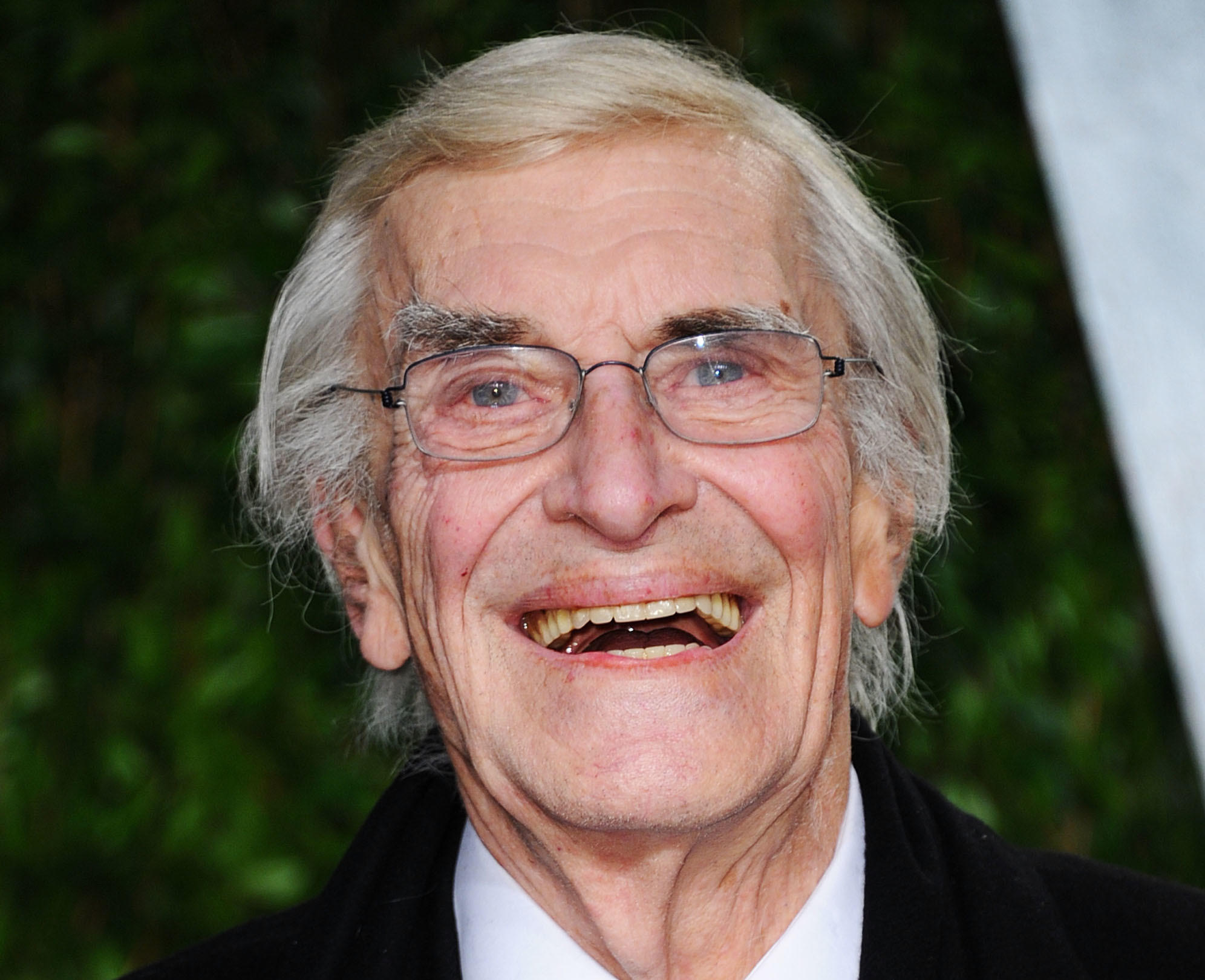 Academy Award Winning Actor Martin Landau known for his leading roles in North By Northwest and the 1960s Mission Impossible TV series has died. He was 89