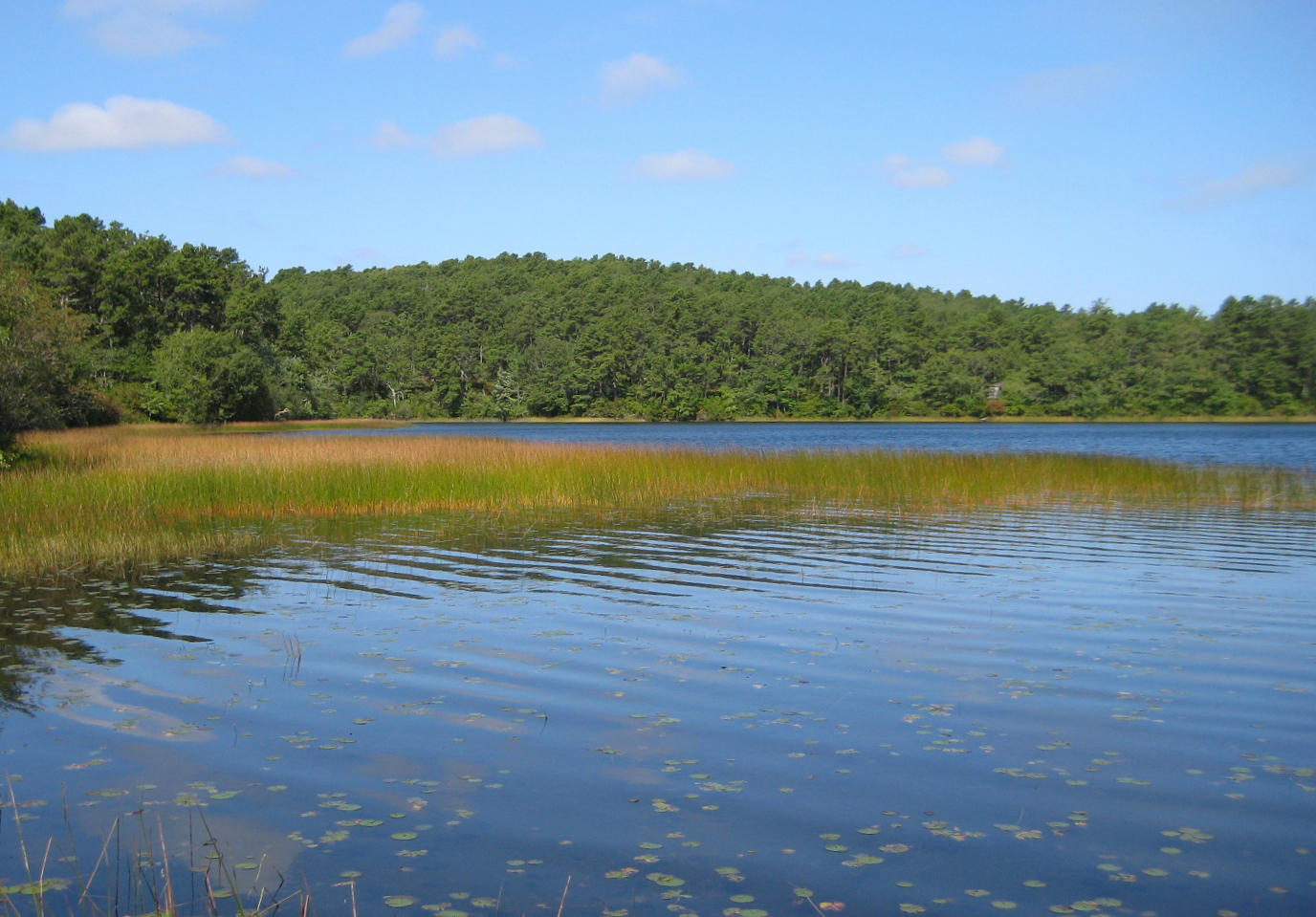 Cape cod 39 s kettle ponds are showing signs of climate for Small pond