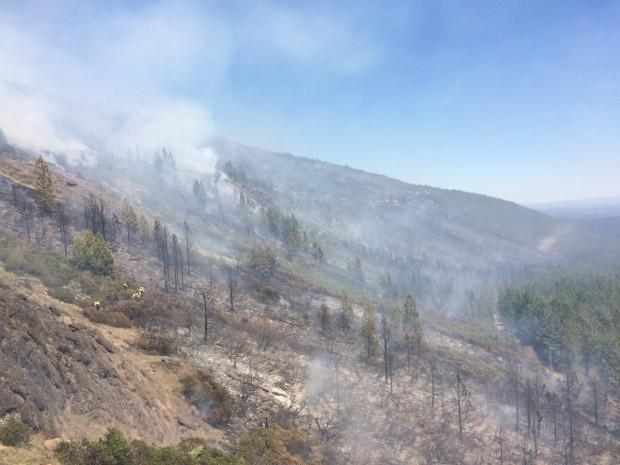 Gov. Kate Brown declares state of emergency to address wildfires