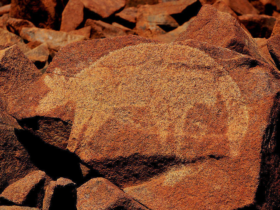 animal images in prehistoric rock art looking beyond. Black Bedroom Furniture Sets. Home Design Ideas