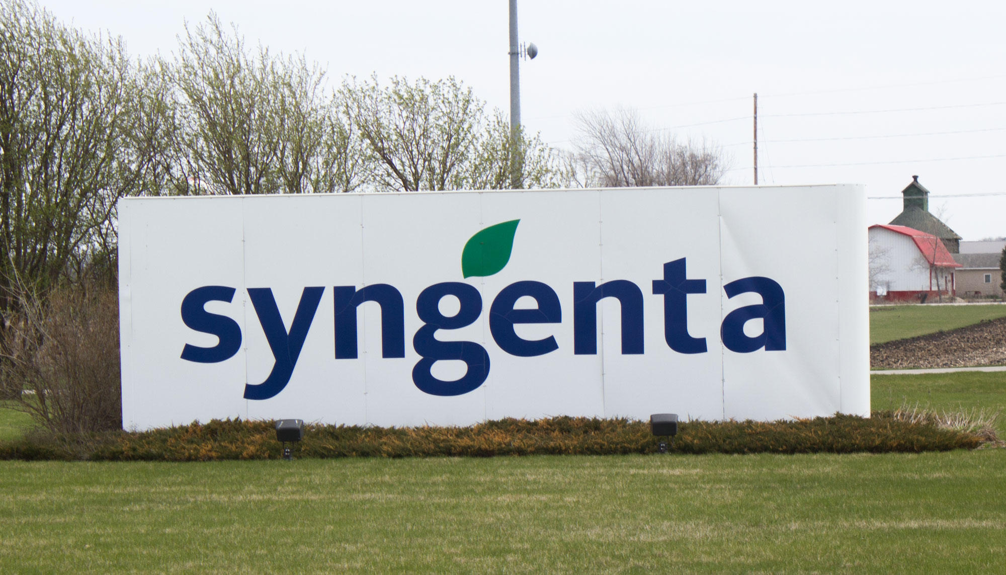 Farmers, Syngenta reach settlement over Agrisure Viptera corn seed