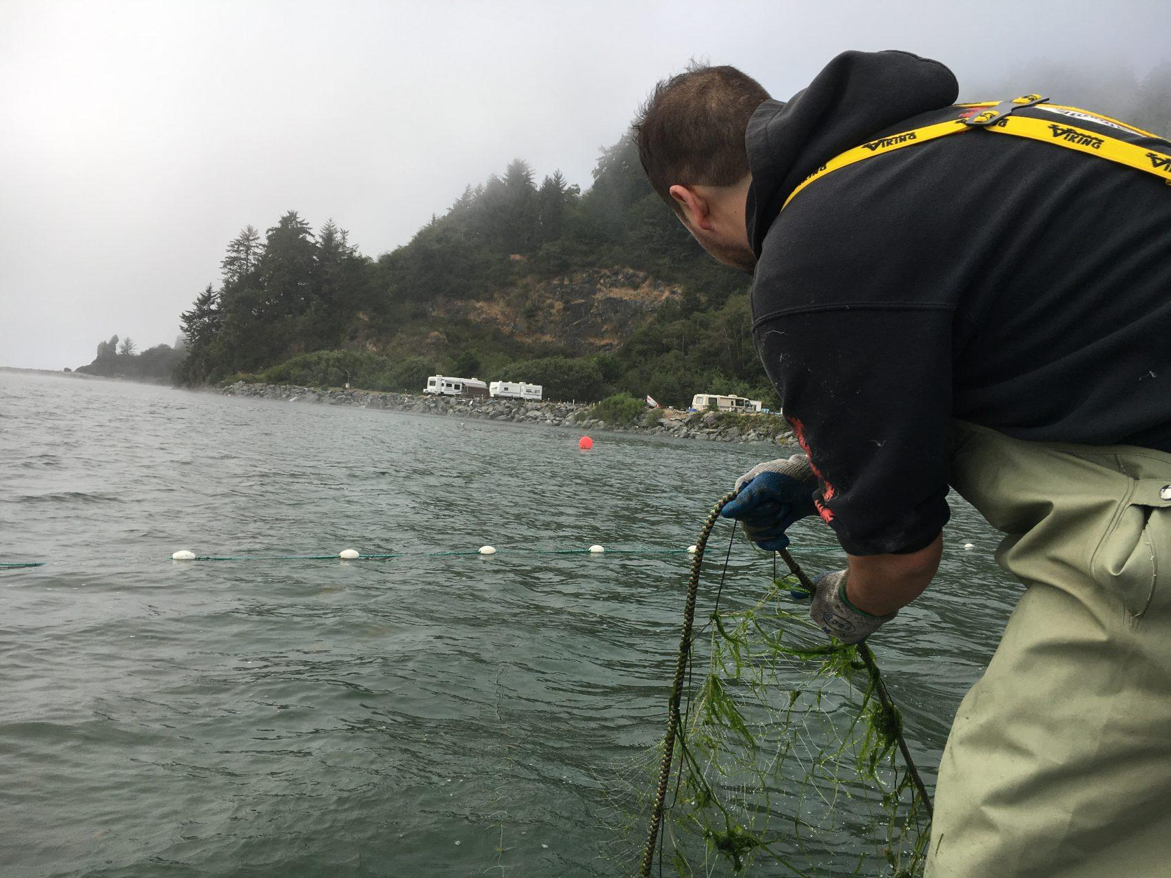 Salmon Decline In Northern California Is Bad News For