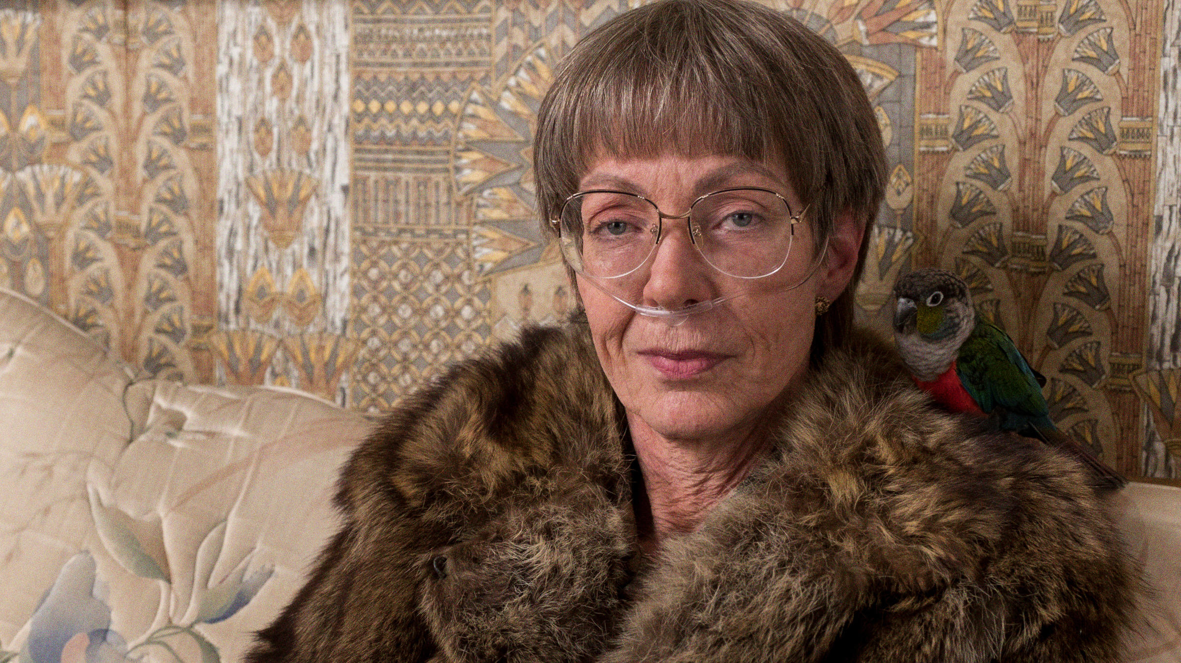 Tonya Harding 'loved' I, Tonya, according to Allison Janney