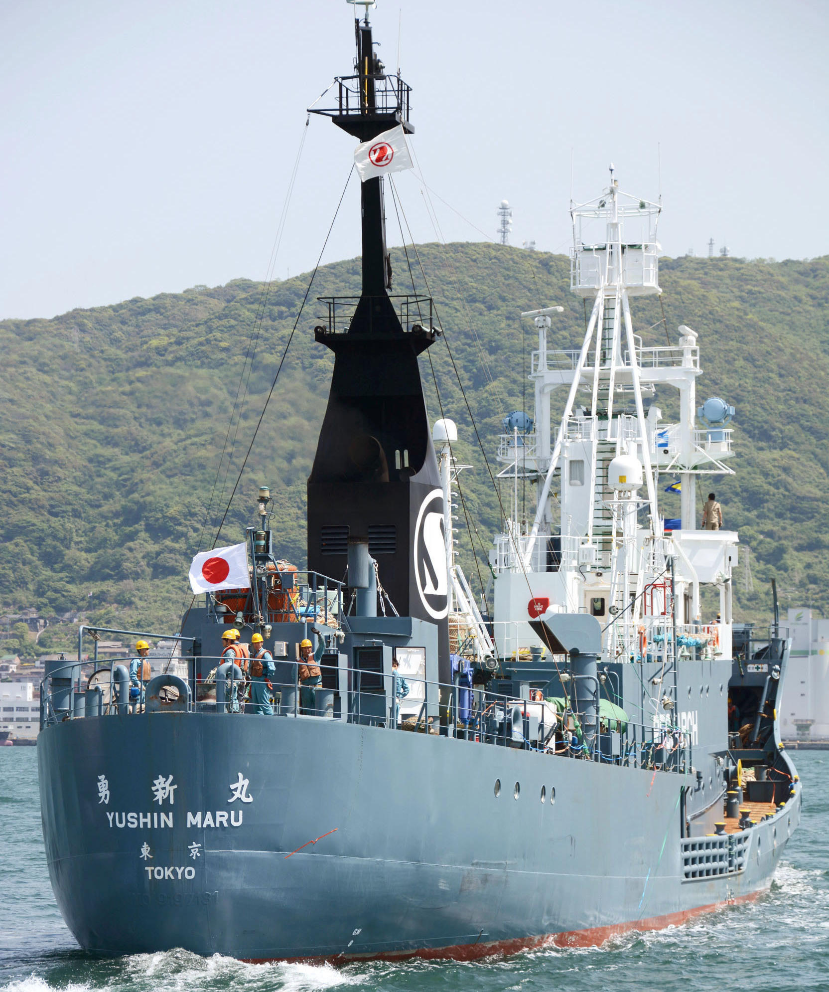 Japan Says It Wants To Resume Larger Annual Whale Hunt Vermont