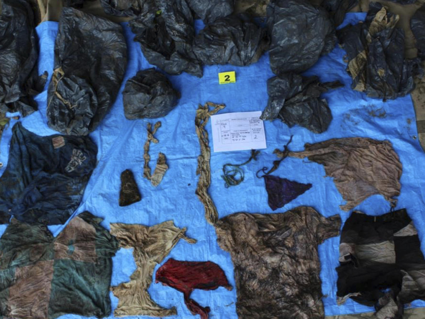 Skulls of 168 drug cartel victims found in Mexico mass grave