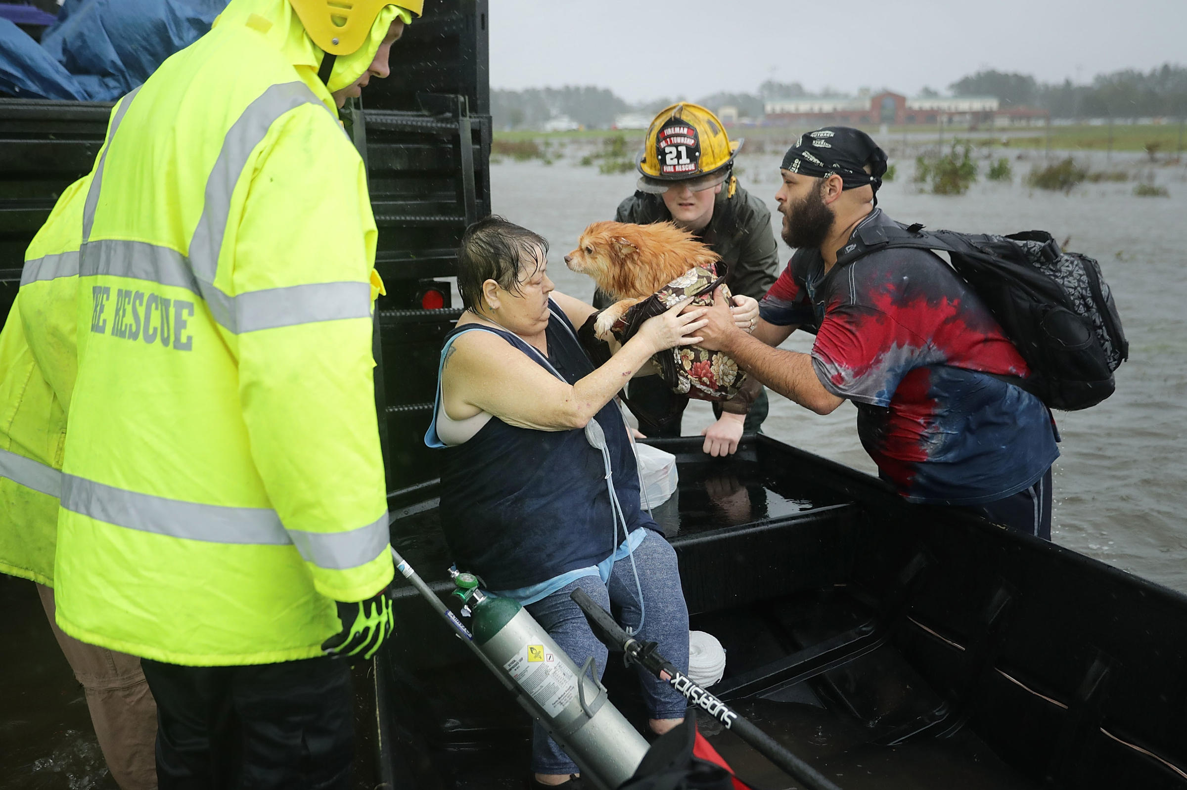 Large Dog Rescues Nc