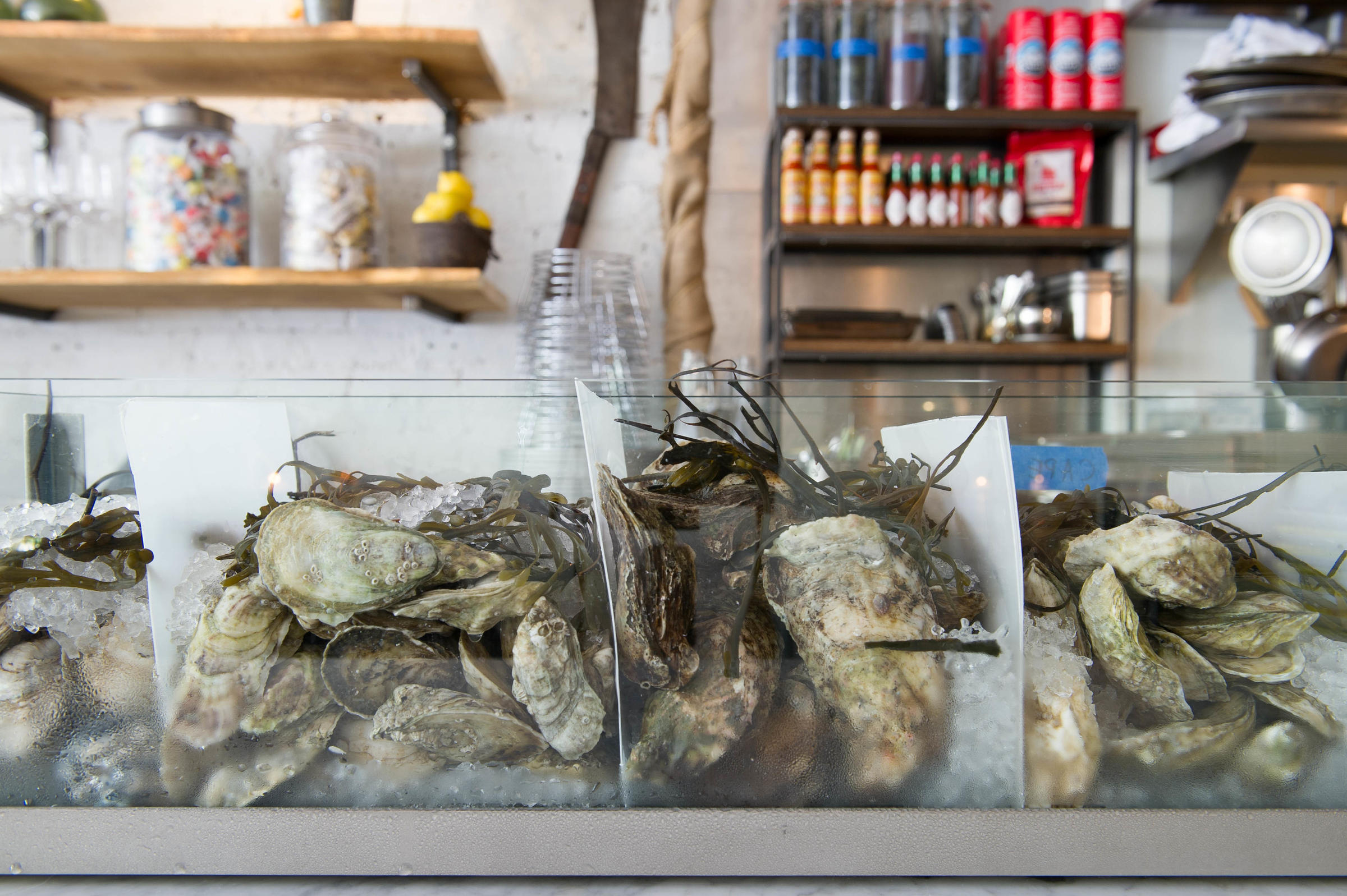Oysters On The Half Shell Are Actually Saving New York S