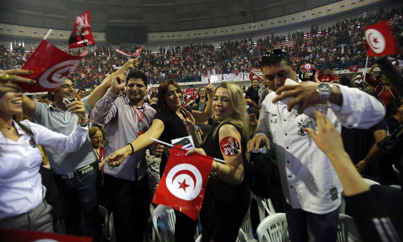 <p>Supporters of Beji Caid Essebsi, the Nidaa Tounes party leader and presidential candidate, wave flags and shout slogans during a presidential electoral campaign rally in Tunis on November 15, 2014. </p>