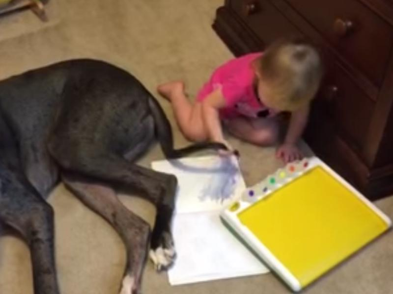 Screenshot from a YouTube video posted on Dec. 8, 2015, by Lance Ellis of a toddler painting with the tail of the family dog.