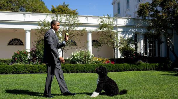 obama_14.jpg
