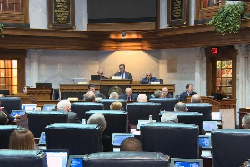 The Senate committee passed the amendment 11-2 on Tuesday. (Lauren Chapman/IPB News)